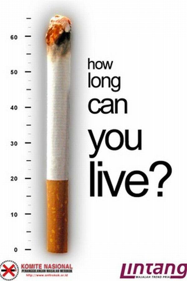 Những poster phòng chống thuốc lá ấn tượng - http://nhungdieuthuvi.com/ (17)