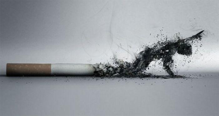 Những poster phòng chống thuốc lá ấn tượng - http://nhungdieuthuvi.com/ (42)