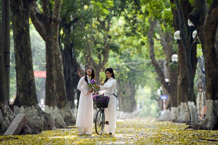 Vẻ đẹp áo dài Việt Nam