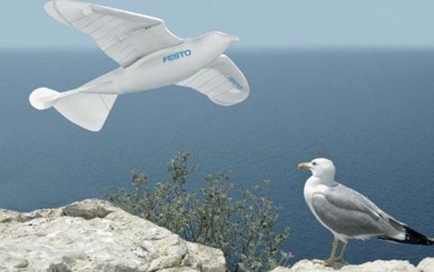 Robot SmartBird có hình dáng mô phỏng của chim hải âu. Ảnh: Guardian