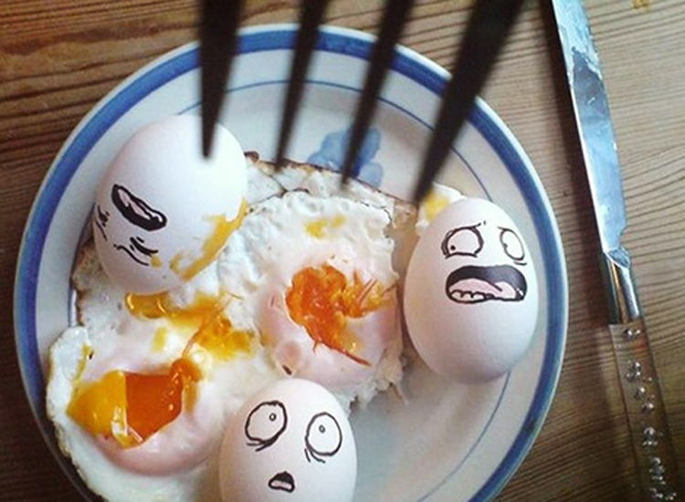 Những bức ảnh trang trí trứng vui nhộn   trung ga, trang tri trung, tac pham, sang tao, sáng tạo, ngộ nghĩnh, ngo nghinh, doc dao, độc đáo, thu vi, thú vị, anh vui trung   anh vui cuoi (9)
