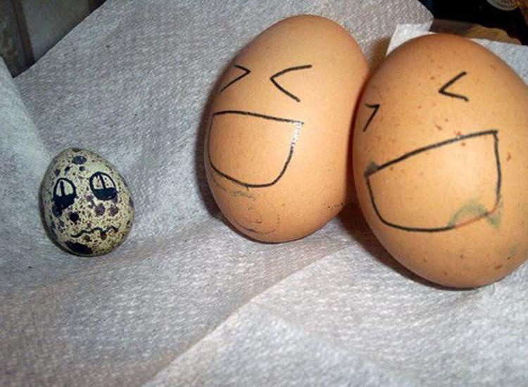 Những bức ảnh trang trí trứng vui nhộn | trung ga, trang tri trung, tac pham, sang tao, sáng tạo, ngộ nghĩnh, ngo nghinh, doc dao, độc đáo, thu vi, thú vị, anh vui trung | anh vui cuoi (5)