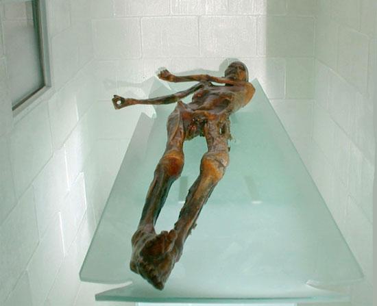 Người băng Ozti tại Bảo tàng khảo cổ học South Tyrol ở Bolzano (Ảnh: Museo Archeologico dell'Alto Adige)
