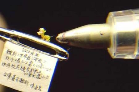 Bức tượng rồng nhỏ nhất thế giới được ra mắt