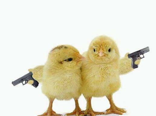 Truyện cười: Chàng cao bồi đi mua súng