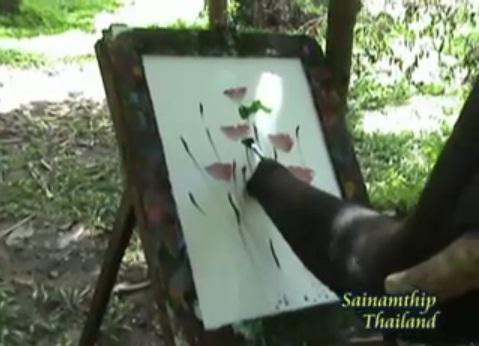 [Video] Tròn mắt xem voi vẽ tranh cực đẹp