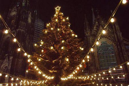 Kỷ lục nhiều bóng đèn nhất bật sáng đồng thời trên một cây thông Noel là 150.000 bóng