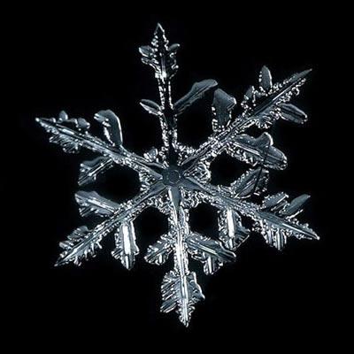 Ngắm nhìn những bông tuyết kết tinh tuyệt đẹp | Timofey Cherepanov, bong tuyet, ket tinh, anh dep bong tuyet, anh dep, (16)
