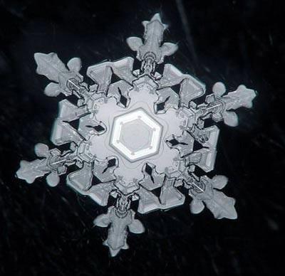 Ngắm nhìn những bông tuyết kết tinh tuyệt đẹp | Timofey Cherepanov, bong tuyet, ket tinh, anh dep bong tuyet, anh dep, (13)
