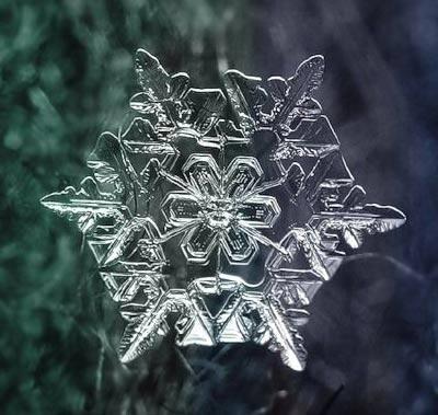 Ngắm nhìn những bông tuyết kết tinh tuyệt đẹp | Timofey Cherepanov, bong tuyet, ket tinh, anh dep bong tuyet, anh dep, (12)