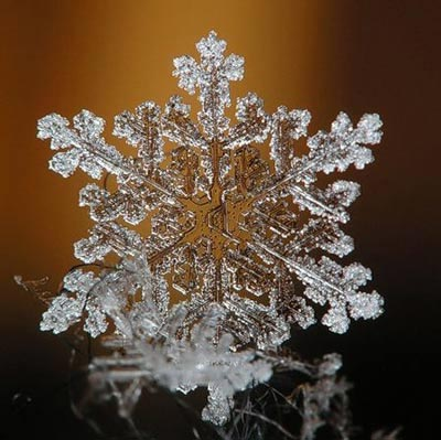 Ngắm nhìn những bông tuyết kết tinh tuyệt đẹp | Timofey Cherepanov, bong tuyet, ket tinh, anh dep bong tuyet, anh dep, (9)