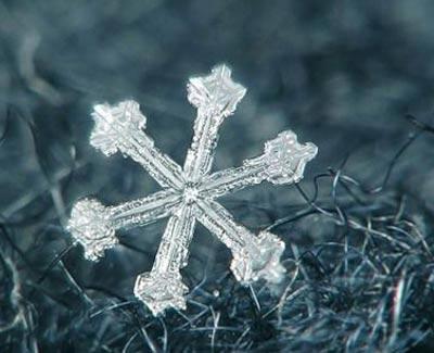 Ngắm nhìn những bông tuyết kết tinh tuyệt đẹp | Timofey Cherepanov, bong tuyet, ket tinh, anh dep bong tuyet, anh dep, (1)