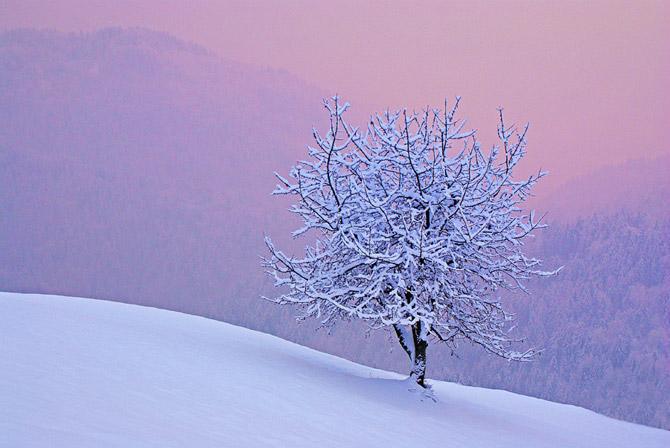 Thiên nhiên đẹp ngỡ ngàng qua ống kính của Janez Tolar | Photography (7)