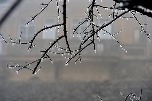 Cận cảnh băng tuyết phủ trắng núi Mẫu Sơn (3)