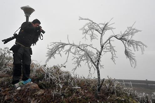 Cận cảnh băng tuyết phủ trắng núi Mẫu Sơn (19)