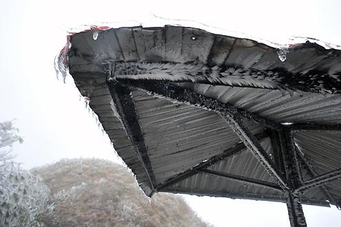 Cận cảnh băng tuyết phủ trắng núi Mẫu Sơn (14)