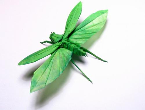 Bộ sưu tập côn trùng độc đáo bằng... giấy (6)