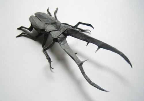 Bộ sưu tập côn trùng độc đáo bằng... giấy (4)