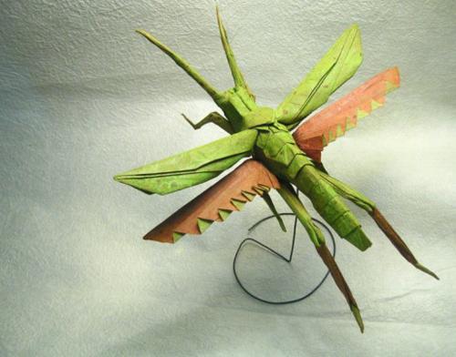 Bộ sưu tập côn trùng độc đáo bằng... giấy (2)