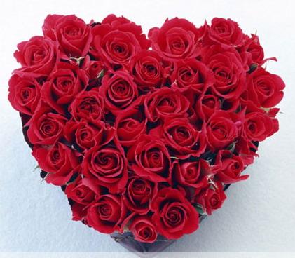 Trái tim hoa hồng (ảnh minh họa từ Internet)