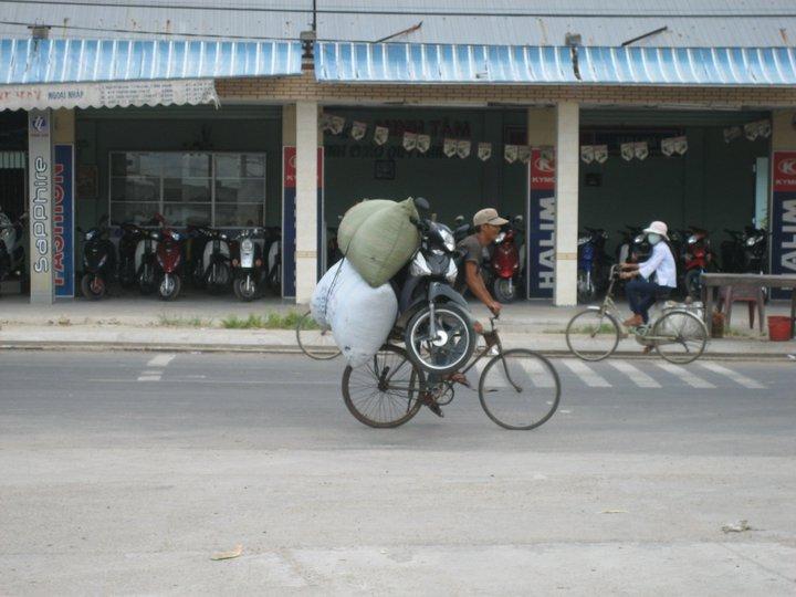 Những bức ảnh 'độc' ở Việt Nam