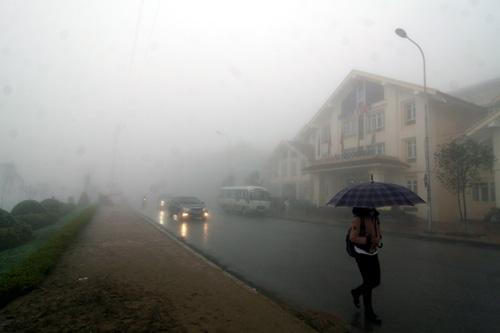 Sapa chìm đắm trong sương mù (6)