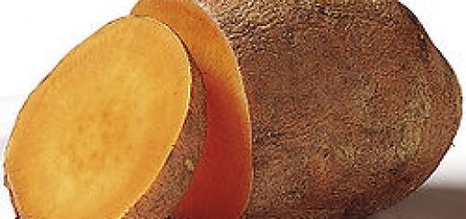 Củ khoai lang (ảnh minh họa)