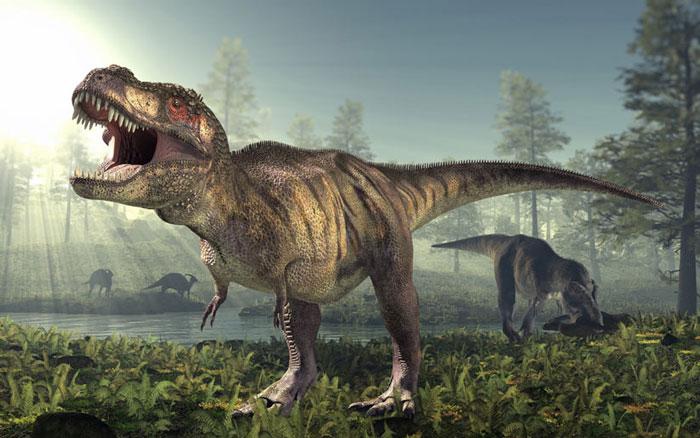 Khủng long bạo chúa (Tyrannosaurus rex) - tuyệt chủng cách đây 65 triệu năm