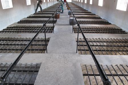Chuồng cọp trong hệ thống nhà tù Côn Đảo