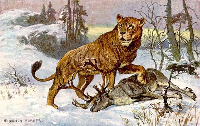 Sư tử hang (Panthera leospelaea) - tuyệt chủng cách đây 2000 năm