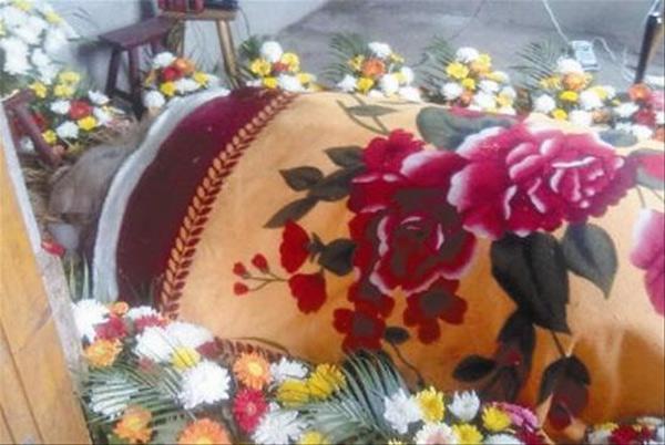 """""""Vua lợn"""" qua đời tại Trung Quốc"""