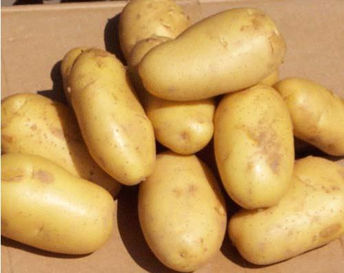 4. Khoai tây