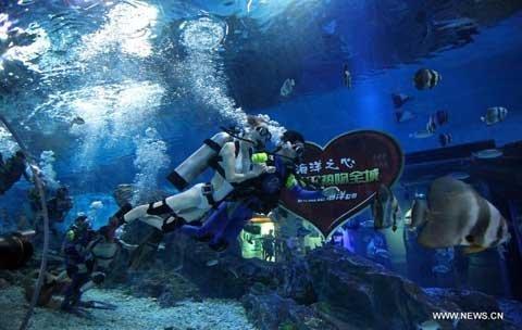 Hôn nhau dưới nước trong ngày Valentine châu Á (4)