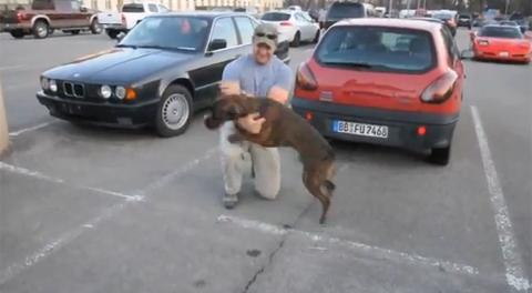 Con chó Chuck nhảy lên sung sướng khi đón chủ nhân đi lính trở về. Đoạn clip về hình này đăng tải lên Youtube thu hút gần 3 triệu người xem, nhiều người bày tỏ sự yêu mến với Chuck. Ảnh chụp từ Youtube.
