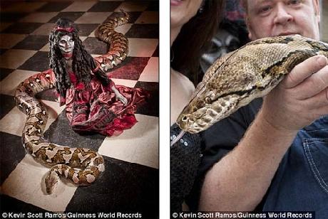 Chú rắn Medusa có chiều dài kỷ lục