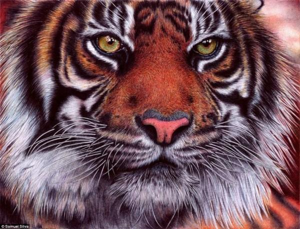 Sững sờ với kiệt tác tranh bằng bút bi (7)