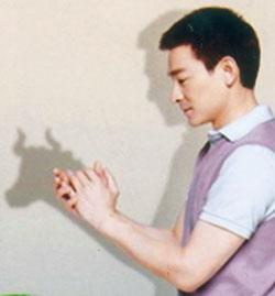 Ngôi sao điện ảnh - ca nhạc Lưu Đức Hòa khoái trâu
