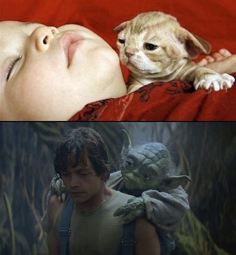 Còn đây là trong bộ phim Star Wars.