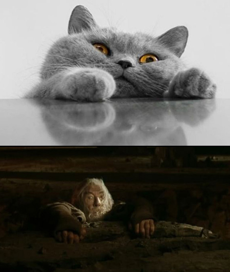 Gandalf trong The Lord of the Rings.