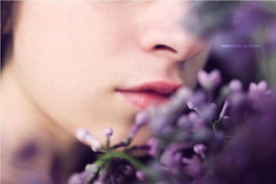 Dịu dàng sắc tím của hoa Tử Đinh Hương ♥ (3)