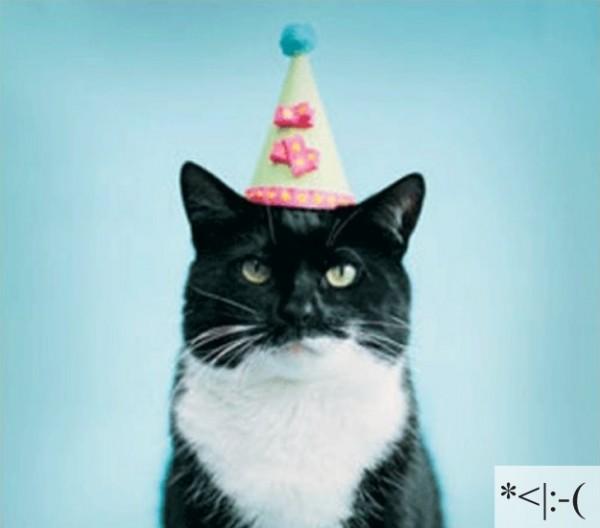 Thú vị: mèo biểu cảm như 'Emoticons' | chủ đề mèo | Thú vị (6)