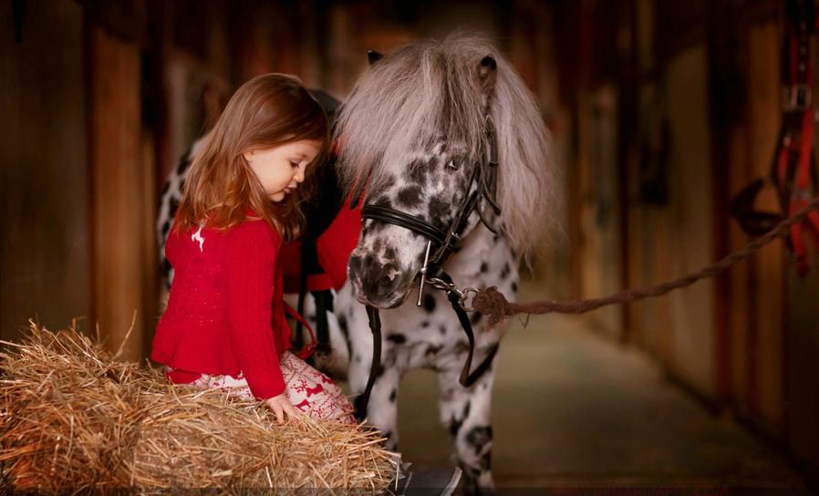 Ngắm những thiên thần nhỏ đáng yêu của Irina Rempel | Ảnh bé yêu (12)