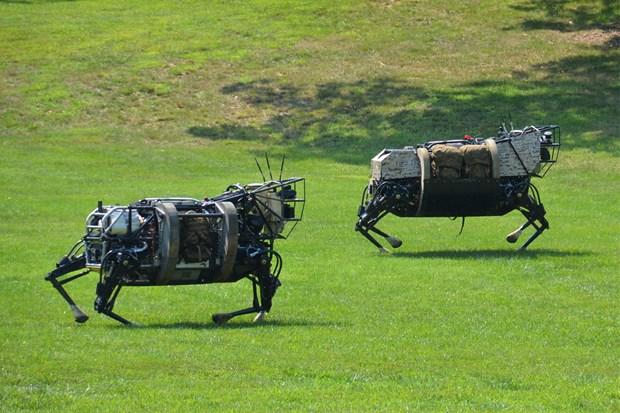 LS3-Chó robot của Quân đội Mỹ