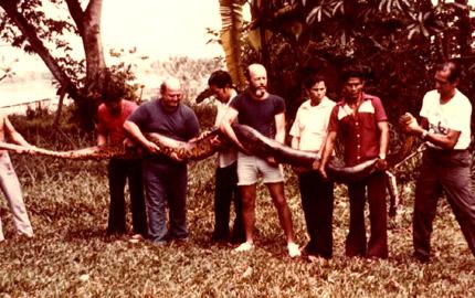 Anaconda – quái vật hung bạo nhất hành tinh