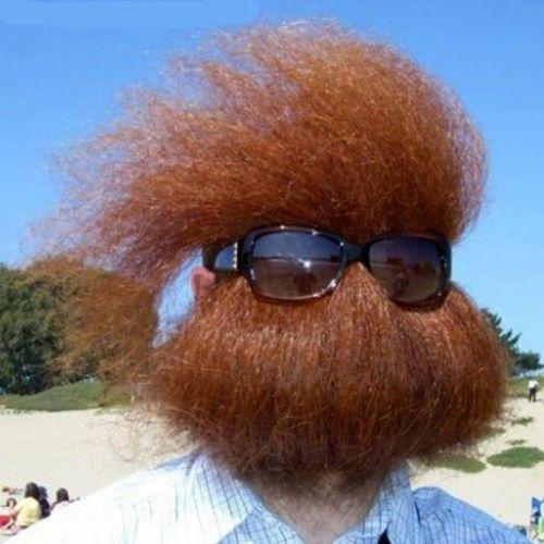 Những bộ râu vô địch về độ...quái (2)