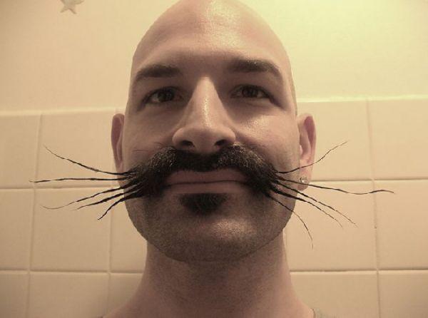 Những bộ râu vô địch về độ...quái (12)