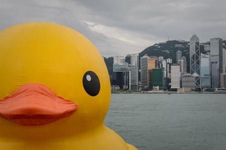 Vịt cao su khổng lồ tiến vào cảng Hồng Kông (2)