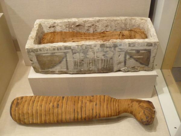 Một xác ướp mèo của Ai Cập được trưng bày tại bảo tàng Brooklyn (New York)