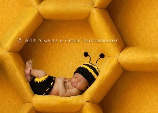 Chú ong thợ này lười quá đi!