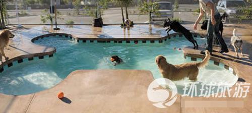 Ngắm bể bơi ngoài trời vỡi những thiết kế sáng tạo (1)